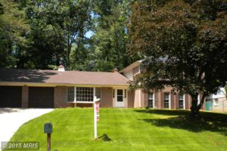 11917  Viewcrest Terrace  , Silver Spring, MD 20902 (#MC8645791) :: The Speicher Group & RE/MAX Realty Centre