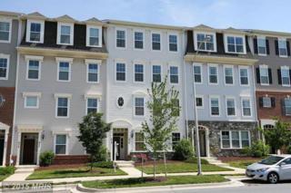 438  Orchard Ridge Drive  , Gaithersburg, MD 20878 (#MC8646497) :: Fulcrum Properties Group