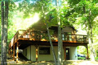 177  Shady Tree Lane  , Hedgesville, WV 25427 (#MO8468275) :: Team Waldo Realty