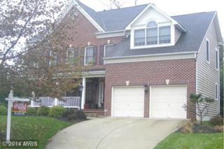 12801  Portias Promise Drive  , Bowie, MD 20720 (#PG8480714) :: The Maryland Group of Long & Foster