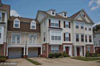 8212  Frog Hollow Court  , Manassas, VA 20111 (#PW8412355) :: RE/MAX Premier