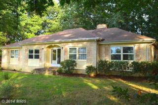 18328  Nob Hill Drive  , Triangle, VA 22172 (#PW8444678) :: Charis Realty Group