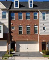 12648  Aubrey Glen Terrace  , Woodbridge, VA 22192 (#PW8486035) :: Susan Scheiffley & Company Homes