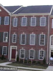 16413  Steerage Circle  , Woodbridge, VA 22191 (#PW8488191) :: The Maryland Group of Long & Foster
