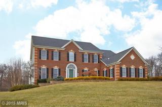 13660  Holly Ridge Lane  , Gainesville, VA 20155 (#PW8544433) :: Move4Free Realty LLC