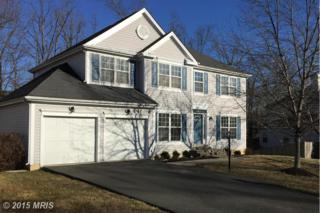 8401  Cleveland Bay Court  , Gainesville, VA 20155 (#PW8563000) :: Move4Free Realty LLC
