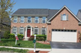 6813  Mandalay Court  , Gainesville, VA 20155 (#PW8615330) :: Move4Free Realty LLC