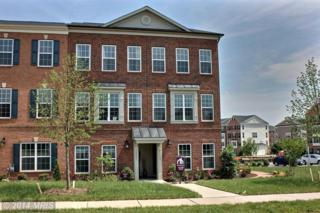 15399  Rosemont Manor Drive  , Haymarket, VA 20169 (#PW9004994) :: The E4Realty Group