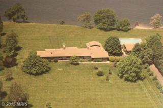 3208  Bennett Point Road  , Queenstown, MD 21658 (#QA8566227) :: The Dailey Group