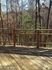 1592  Greenview Drive  , Basye, VA 22810 (#SH8508560) :: RE/MAX Premier