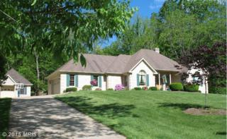 210  Spring Hollow Road  , Woodstock, VA 22664 (#SH8564419) :: Coldwell Banker Elite