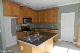 12152  Post Oak Road  , Spotsylvania, VA 22551 (#SP8445072) :: Fulcrum Properties Group