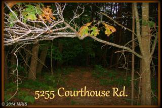 5255  Courthouse Road  , Spotsylvania, VA 22551 (#SP8463489) :: Susan Scheiffley & Company Homes