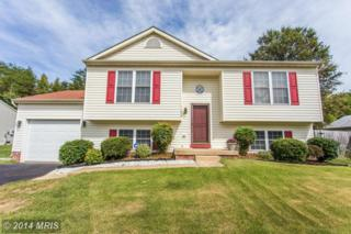 11606  Woodland View Drive  , Fredericksburg, VA 22407 (#SP8465946) :: Coldwell Banker Elite