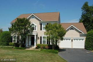 10323  Augusta Court  , Fredericksburg, VA 22408 (#SP8643679) :: Coldwell Banker Elite