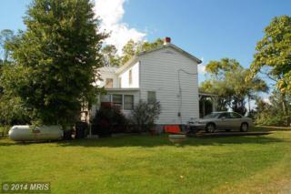 1183  Garrisonville Road  , Stafford, VA 22556 (#ST8463487) :: Susan Scheiffley & Company Homes