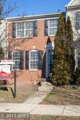 43064  Sherbrooke Terrace  , Leesburg, VA 20176 (#LO8245371) :: Your New Home Team Inc