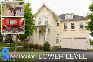 22834  Courtland Park Drive  , Ashburn, VA 20148 (#LO8367087) :: Charis Realty Group
