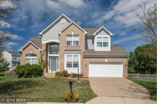 20785  Rainsboro Drive  , Ashburn, VA 20147 (#LO8460876) :: The E4Realty Group