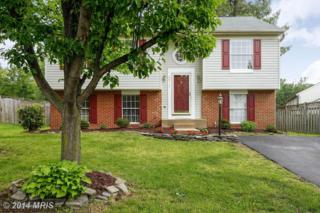 20717  Cross Timber Drive  , Ashburn, VA 20147 (#LO8462423) :: Your New Home Team Inc