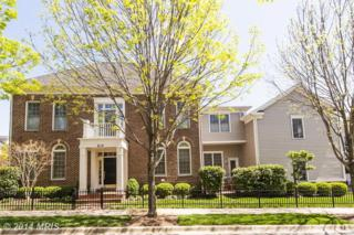 610  Grand Champion Drive  , Rockville, MD 20850 (#MC8400064) :: The Abrams Group of Re/Max Town Center@ Park Potomac