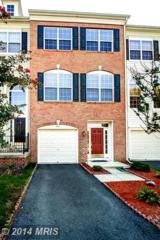 9731  Kennoway Court  , Bristow, VA 20136 (#PW8430828) :: Coldwell Banker Elite