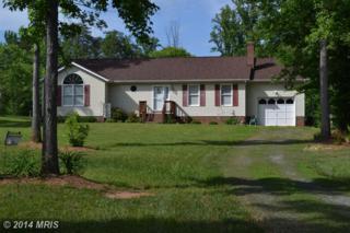 7221  Dorothy Lane  , Spotsylvania, VA 22551 (#SP8367949) :: Team Waldo Realty