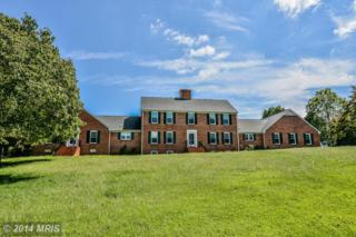 8461  Derrymore Court  , Warrenton, VA 20186 (#FQ8441101) :: Coldwell Banker Elite