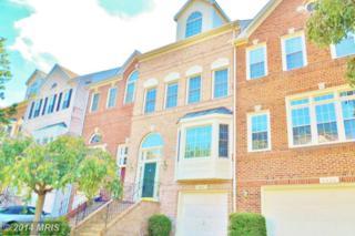 6602  Dunwich Way  , Alexandria, VA 22315 (#FX8461094) :: Susan Scheiffley & Company Homes