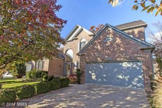 8633  Larkview Lane  , Fairfax Station, VA 22039 (#FX8504139) :: Susan Scheiffley & Company Homes