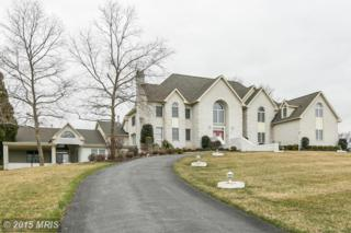 5907  Clifton Oaks Drive  , Clarksville, MD 21029 (#HW8561193) :: The Speicher Group & RE/MAX Realty Centre