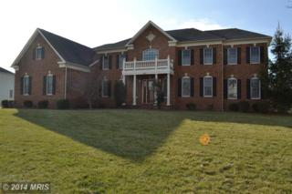 19987  Belmont Station Drive  , Ashburn, VA 20147 (#LO8511299) :: Your New Home Team Inc
