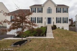 8757  Ellis Mill Drive  , Gainesville, VA 20155 (#PW8507828) :: Move4Free Realty LLC