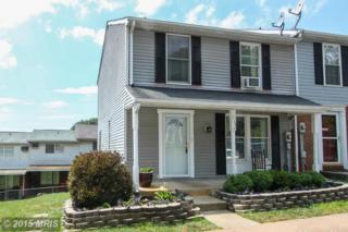 113  Valley View Court  , Boonsboro, MD 21713 (#WA8402568) :: Susan Scheiffley & Company Homes