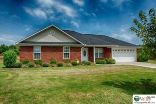 3643  Elkwood Section Road  , Toney, AL 35773 (MLS #1002287) :: Amanda Howard Real Estate