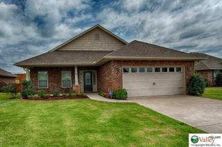 404  Summer Cove  , Madison, AL 35757 (MLS #1002383) :: Amanda Howard Real Estate