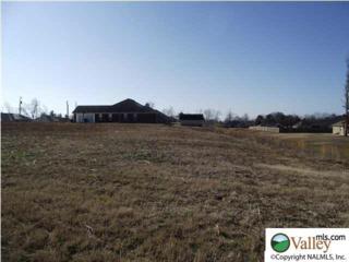 110  Rain Oak Drive  , Harvest, AL 35749 (MLS #1002559) :: Exit Realty of the Valley