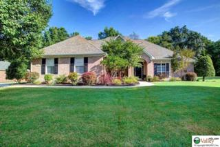 123  Riverwalk Trail  , New Market, AL 35761 (MLS #1003732) :: Morley Real Estate Group