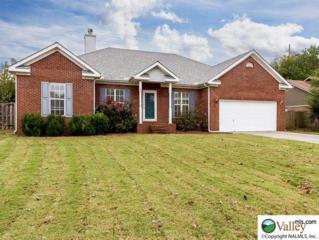 114  N Rock Hampton Dr  , Madison, AL 35758 (MLS #1005516) :: Matt Curtis Real Estate, Inc.