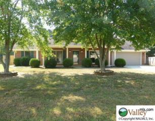 164  Raspberry Way  , Madison, AL 35757 (MLS #1005728) :: Amanda Howard Real Estate