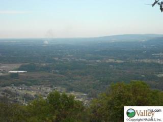 3309  Lookout Drive  , Huntsville, AL 35801 (MLS #1006053) :: Matt Curtis Real Estate, Inc.