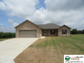 27831  Phillip Wagnon Drive  , Athens, AL 35613 (MLS #1006084) :: Matt Curtis Real Estate, Inc.
