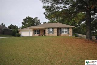 117  Lisa Michelle Drive  , Huntsville, AL 35811 (MLS #1006189) :: Amanda Howard Real Estate