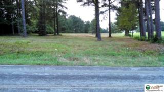 County Road 52  , Anderson, AL 35610 (MLS #1006190) :: Amanda Howard Real Estate