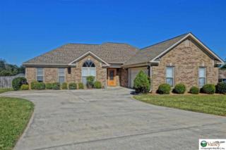 103  Louise Taylor Circle  , Huntsville, AL 35811 (MLS #1006464) :: Matt Curtis Real Estate, Inc.