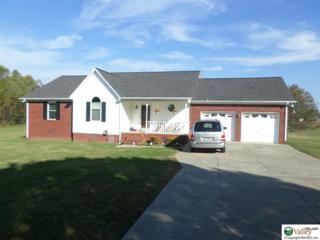 29086  Gatlin Road  , Ardmore, AL 35739 (MLS #1006469) :: Matt Curtis Real Estate, Inc.