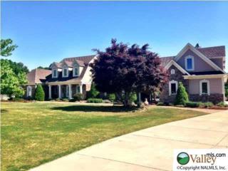 14564  Alabama Hwy 251  , Athens, AL 35613 (MLS #1006476) :: Matt Curtis Real Estate, Inc.
