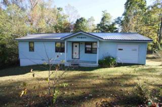 133  Morris Street  , New Market, AL 35761 (MLS #1006614) :: Amanda Howard Real Estate