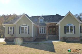 1908 NW Spring Drive  , Fort Payne, AL 35968 (MLS #1007227) :: Coldwell Banker of the Valley