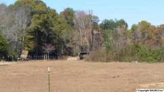 589 NW Jim Mclemore Road  , Harvest, AL 35749 (MLS #1009019) :: Matt Curtis Real Estate, Inc.